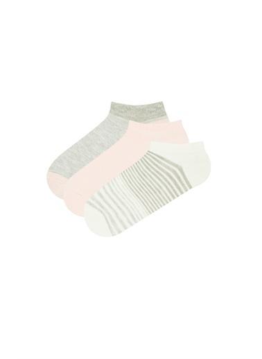Penti Pembe Gri Beyaz Lıne 3Lü Patik Çorap Pembe